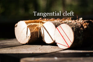 tangential_cleft