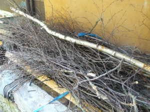 handle lying on bunch of twigs